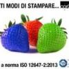Tanti modi di stampare:  tutti a norma ISO 12647-2:2013